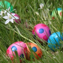 """The Easter Bunny's Problem"" by Melanie McAleer"