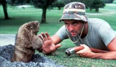 Murray-Caddy-Shack-groundhog